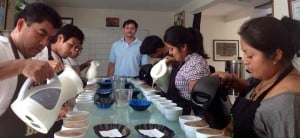 Cupping underway at Sustainable Harvest's<sup>®</sup> Oaxaca office.