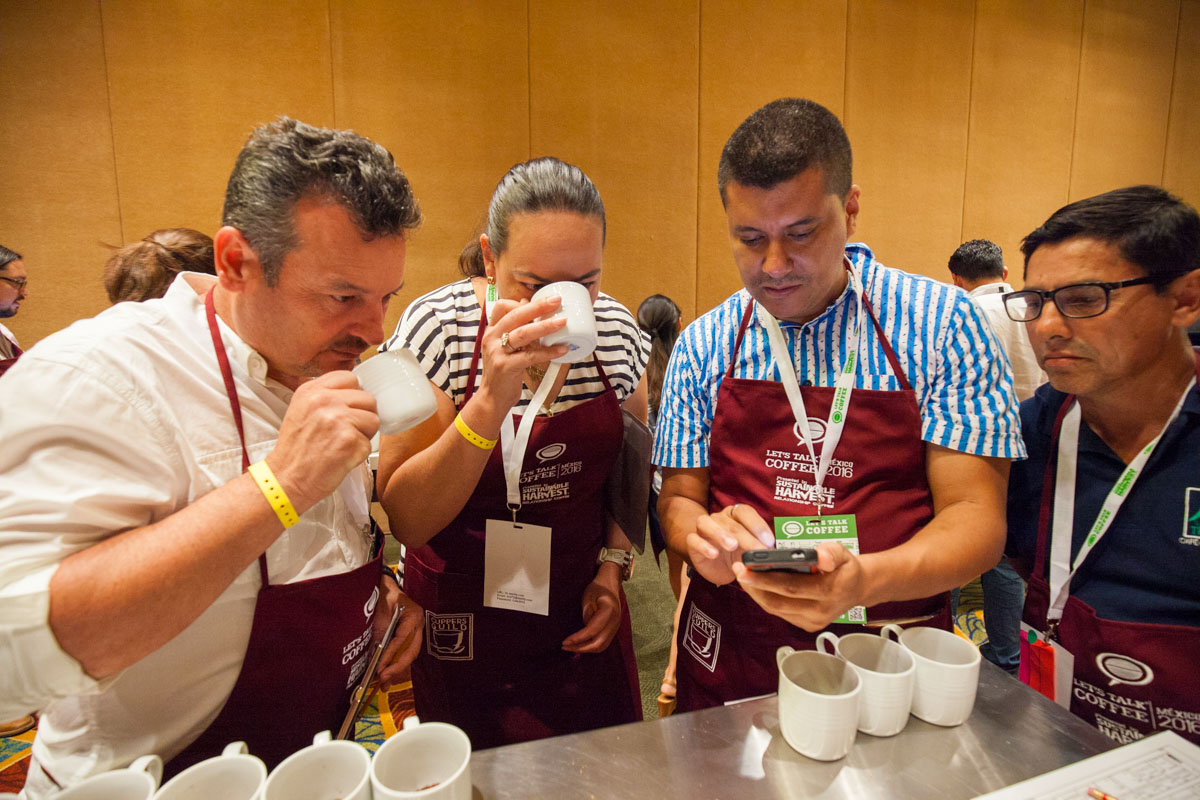 Let's Talk Coffee Cupping